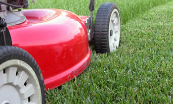 Lawn Care in Cleveland OH Lawn Care Services in Cleveland OH Quality Lawn Care in Cleveland OH